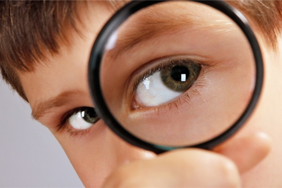 خواص گیاه زعفران برای بینایی